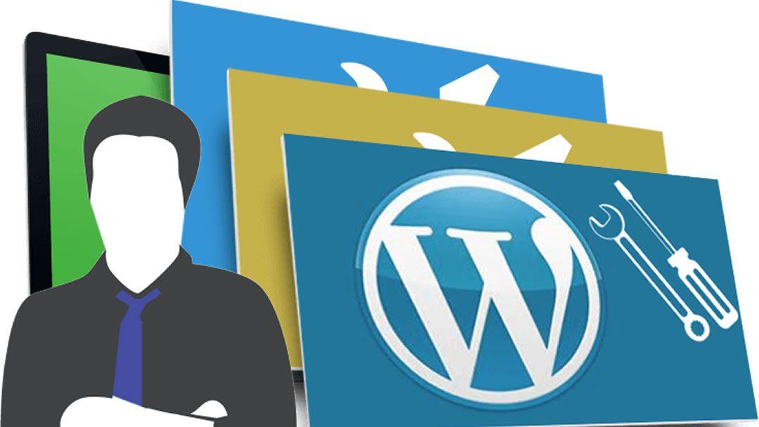 Choosing The Right WordPress Developer | Website Development